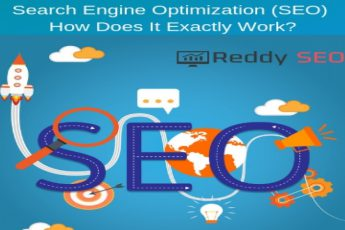 Search-Engine-Optimization-SEO-How-Does-It-Exactly-Work-Reddy-SEO